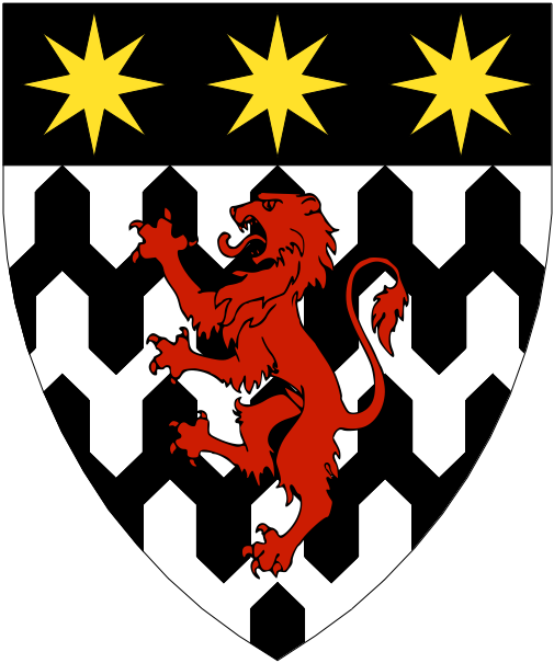[Vairy en pointe argent and sable, a lion gules and on a chief sable three mullets of eight points Or.]