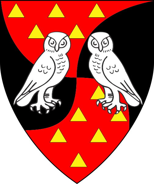 [Per saltire arrondi gules semy of triangles Or and sable, two owls respectant argent]